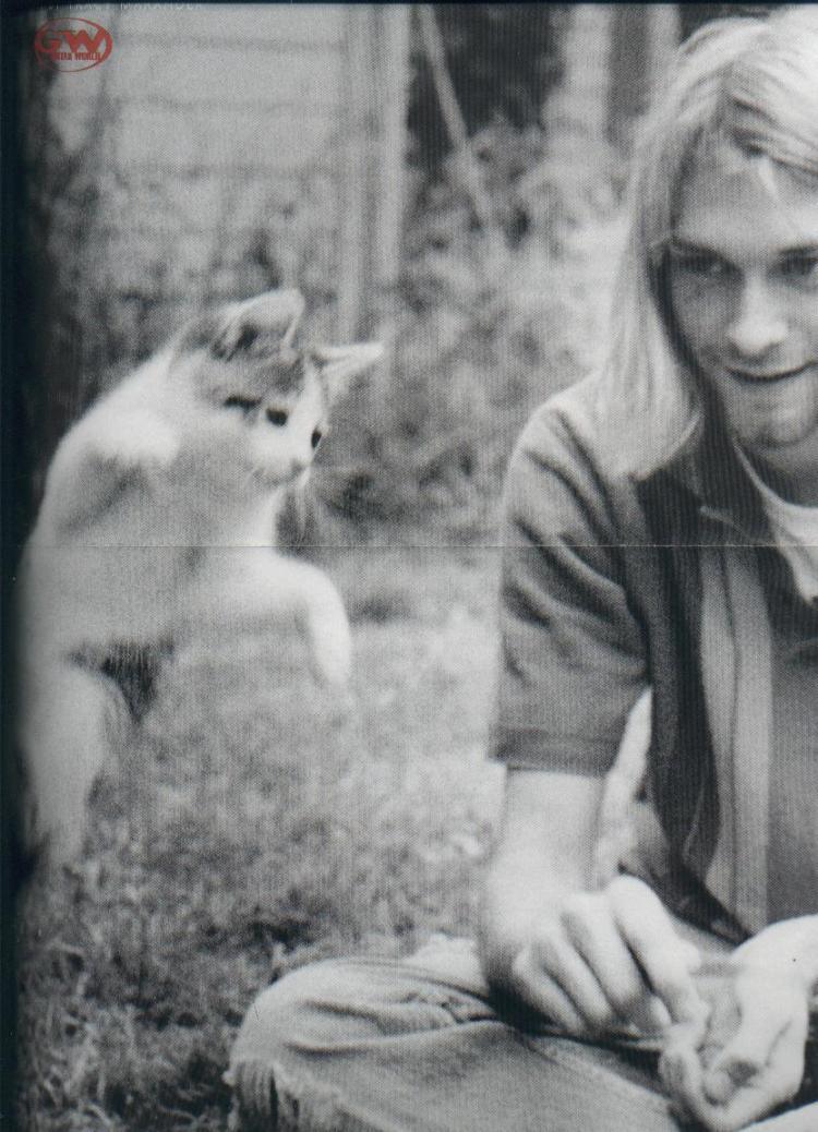 Kurt_Cobain___Cat